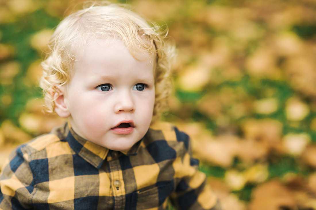 Autumn Family Photoshoot Stockport